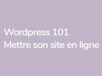 Mettre son site en ligne formation avec Grégoire Noyelle et Yann Vidal