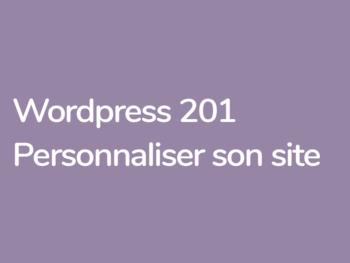 personnaliser son site Wordpress formation avec Grégoire Noyelle et Yann Vidal